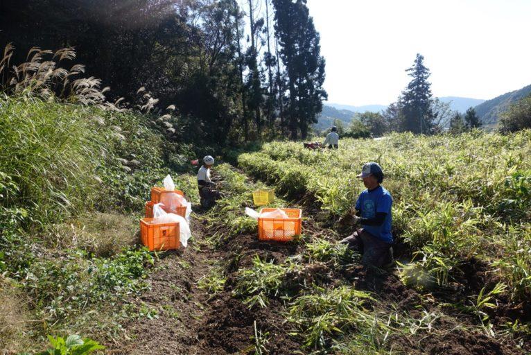 パーマリンク先: 新規就農支援